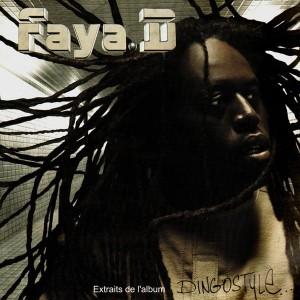 Faya. D - Extraits de l'album Dingostyle - Vinyl EP