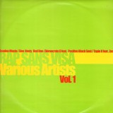 Rap Sans Visa Volume 1 - Various artists - 12''