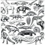 Moschops - Skratch Fossils - LP