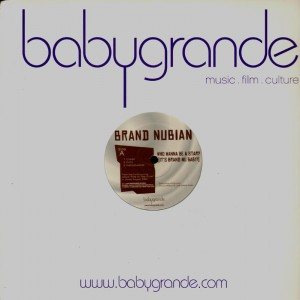 Brand Nubian - Who wanna be a star / Just don't learn - 12''
