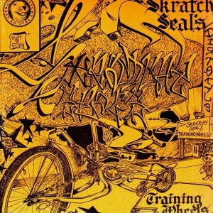 Q-Bert - Skratchy Seals Training Wheels - LP