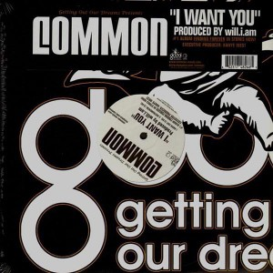 Common - I want you - 12''