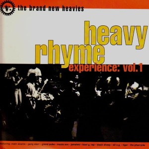 The brand new heavies - Heavy experience vol.1 - 2LP