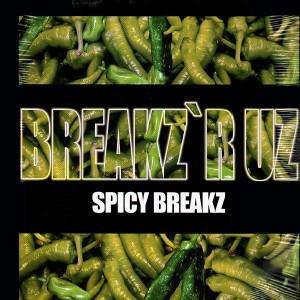 DJ Peabird - Breakz'r uz - Spicy Breakz - LP