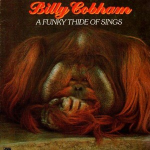 Billy Cobham - A funky thide of sings - LP