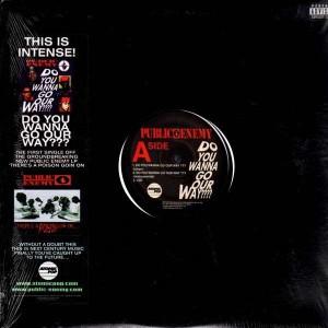 Public Enemy - Do you wanna go our way ??? / LSD / 41:19 - 12''