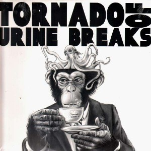 Dj Disk - Tornado Of Urine Breaks - LP