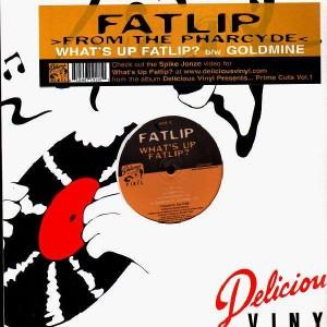 Fat Lip - What's up Fat Lip / goldmine - 12''