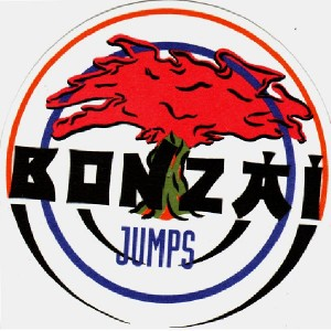 Bonzai jumps - Slipmats