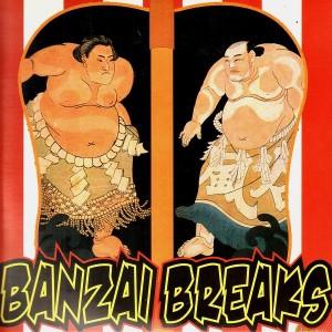 DJ $hin - Banzai breaks - LP